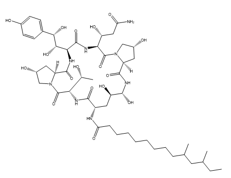 Pneumocandin C(0) Chemical Structure