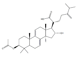 Dehydropachymic acid Chemical Structure