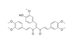 NF-κB-IN-1 Chemical Structure