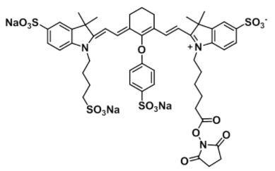 IRDye 800 NHS Chemical Structure
