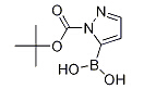 1-(t-butoxycarbonyl)pyrazole-5-boronic acid Chemical Structure