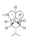 Dendrobine Chemical Structure