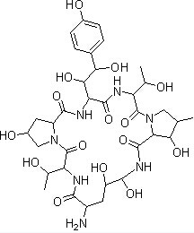Echinocandin B Chemical Structure