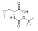 D-Serine, N-[(1,1-dimethylethoxy)carbonyl]-O-methyl- (9CI) Chemical Structure